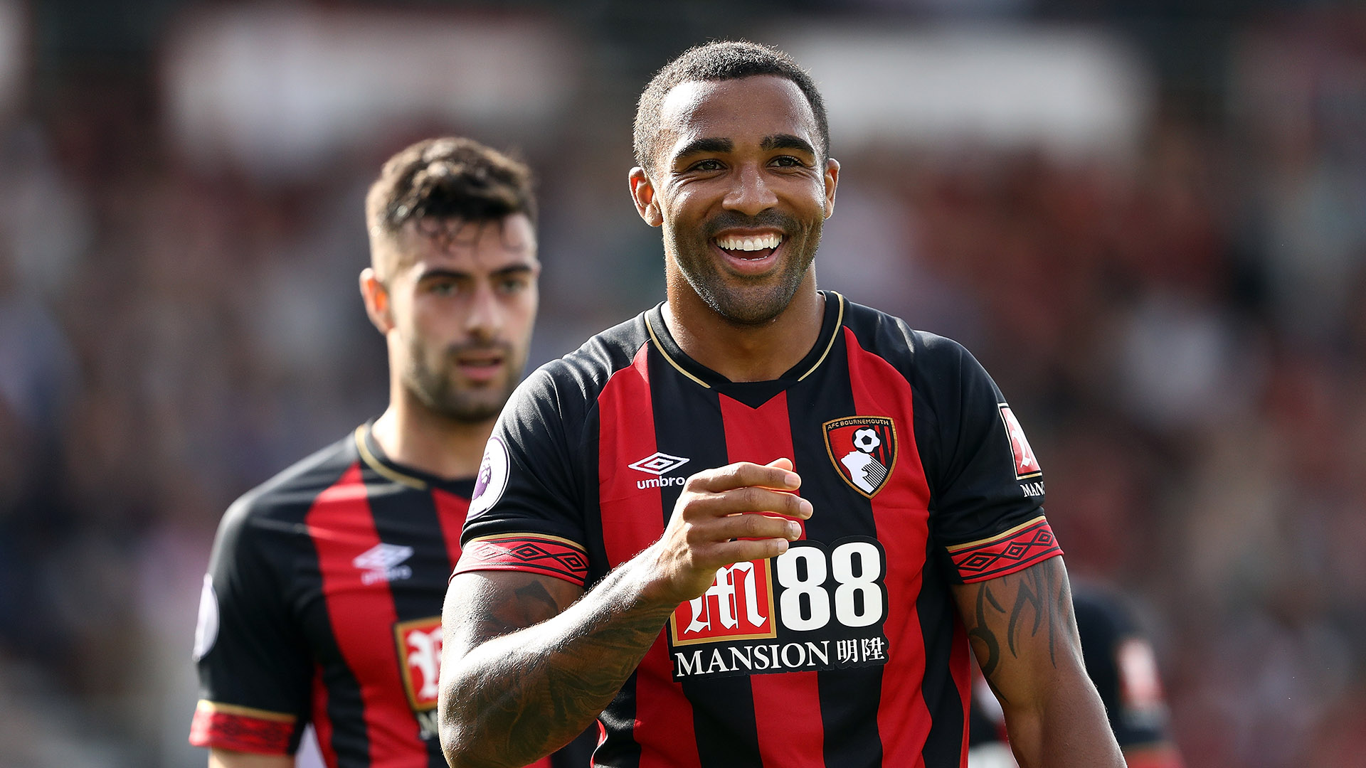 Callum Wilson Bournemouth Premier League