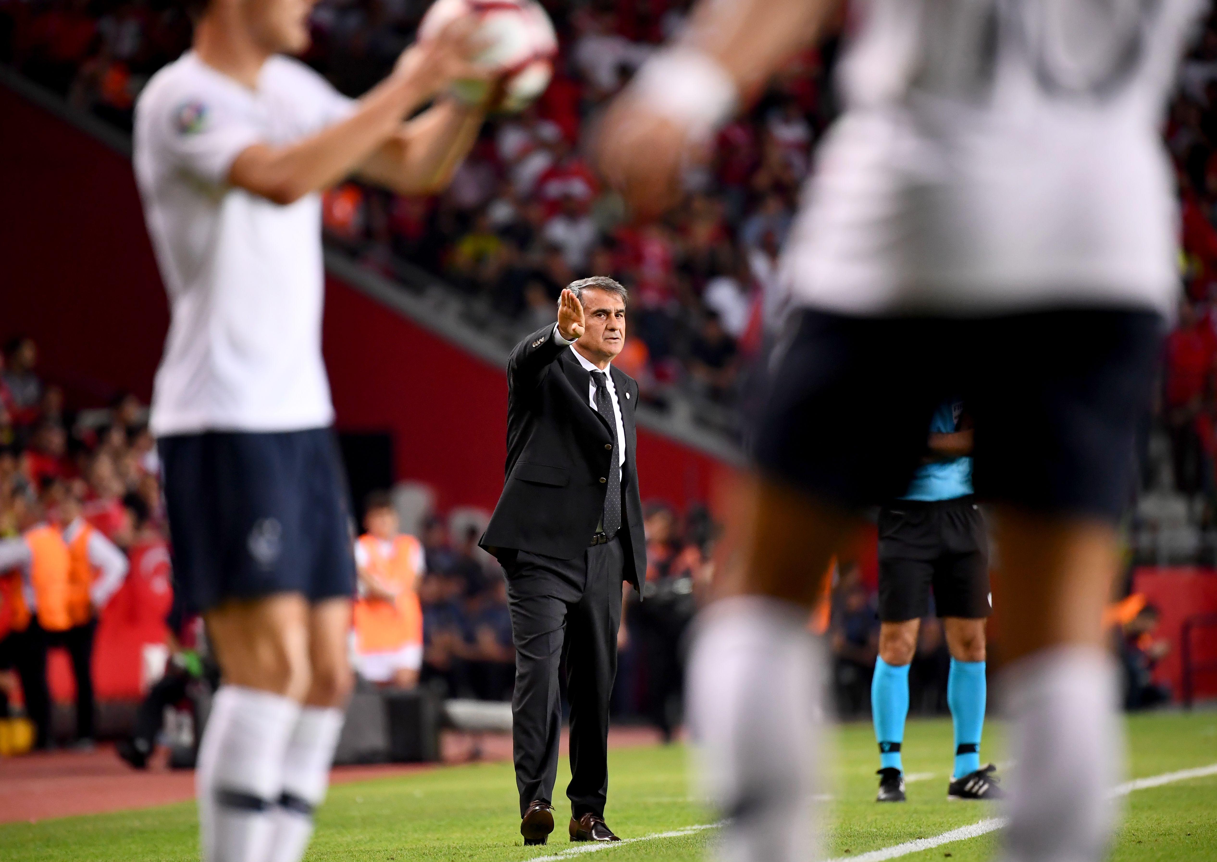 Senol Gunes Turkey France UEFA European Qualifications 06/08/19