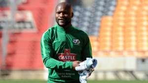 Bafana Bafana, Tokelo Rantie