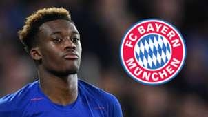 Callum Hudson-Odoi Chelsea Bayern