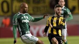 Felipe Melo Penarol Palmeiras