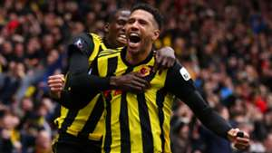 Etienne Capoue Watford FA Cup