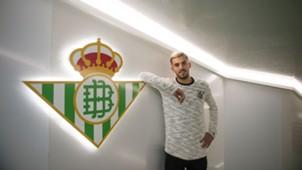 Dani Ceballos Real Betis