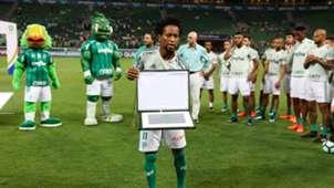 Ze Roberto homenagem Palmeiras Botafogo Brasileirao Serie A 27112017