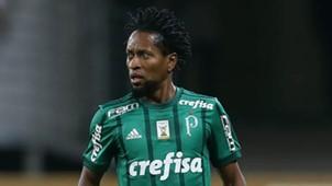 Ze Roberto Palmeiras Cruzeiro Copa do Brasil 28062017