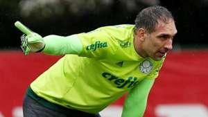 Fernando Prass treino Palmeiras 13062017