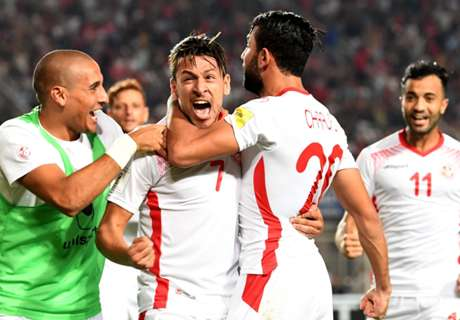 Tunisia World Cup: How the Group G teams fared