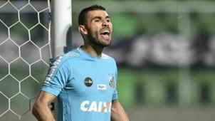 Vanderlei Atletico-MG Santos Brasileirao Serie A 12072017