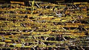 Young Boys Bern Fans Switzerland Schweiz