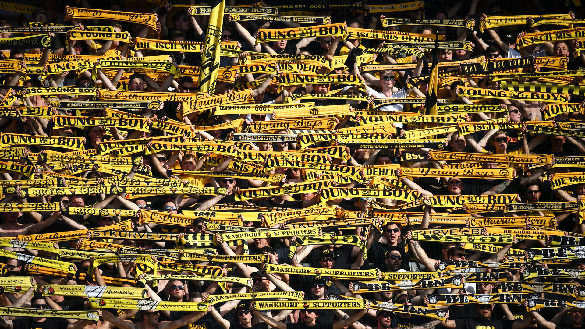 Young Boys Bern Fans Switzerland Schweiz
