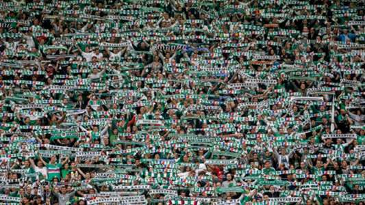 Rapid Wiens Fans 16072016