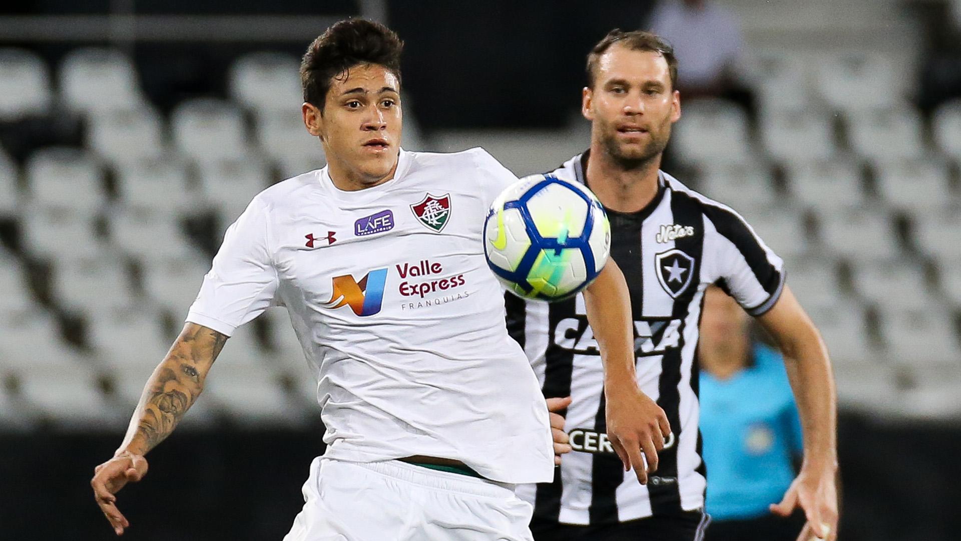 Pedro Joel Carli Botafogo Fluminense Brasileirao Serie A 14052018