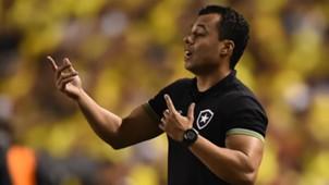 Jair Ventura Botafogo Barcelona Libertadores 21 04 2017