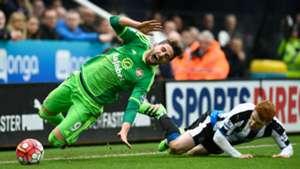 Fabio Borini Sunderland Jack Colback Newcastle United