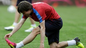 Tomas Rosicky, Training Czech Republic, 20160604