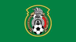 Mexico Logo Panel