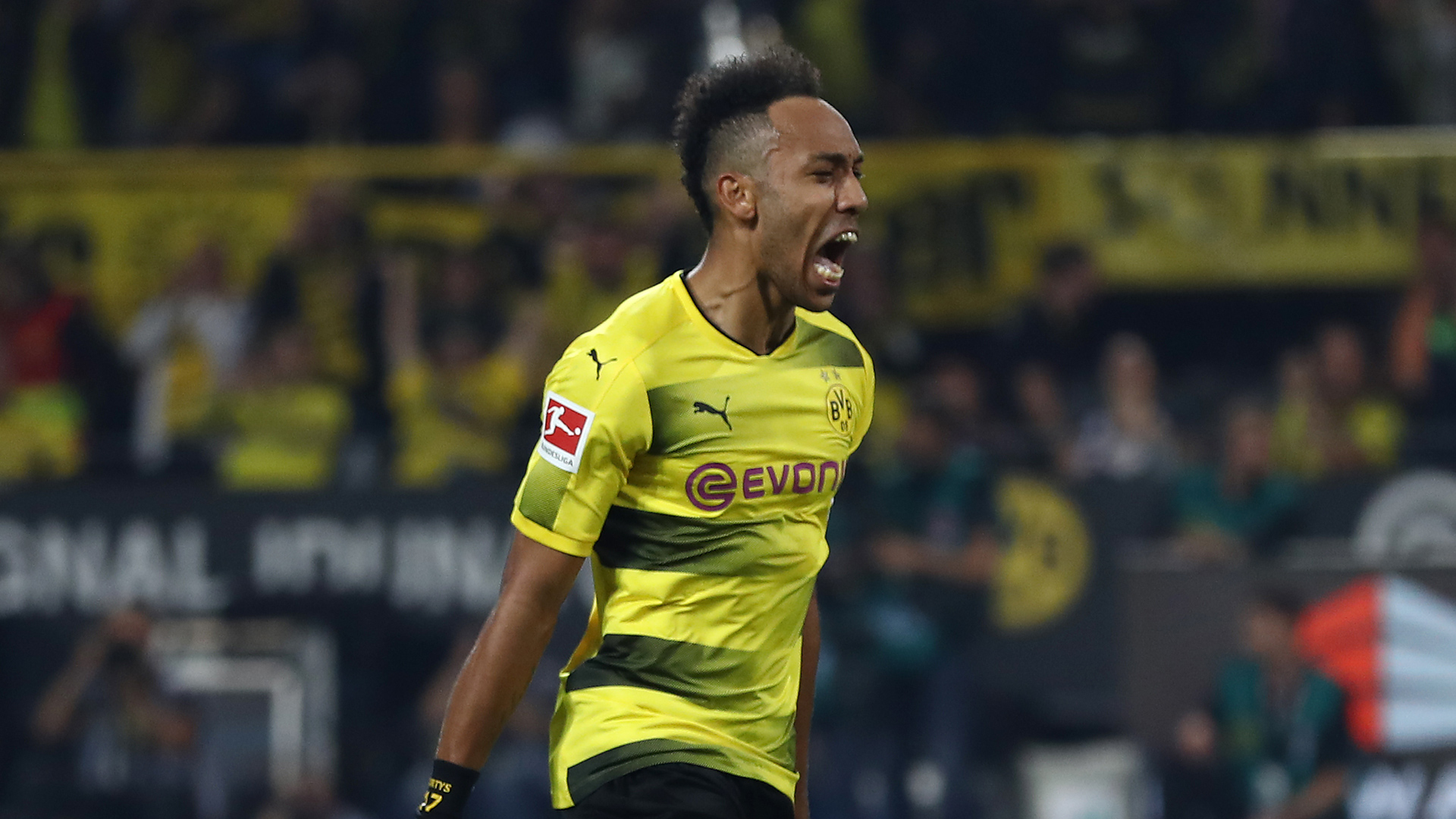 Zorc (DS Borussia Dortmund):