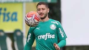 Zé Rafael Palmeiras treino 12022019