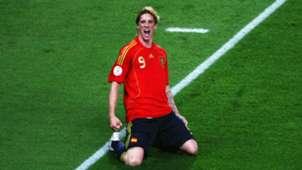HD Fernando Torres Spain
