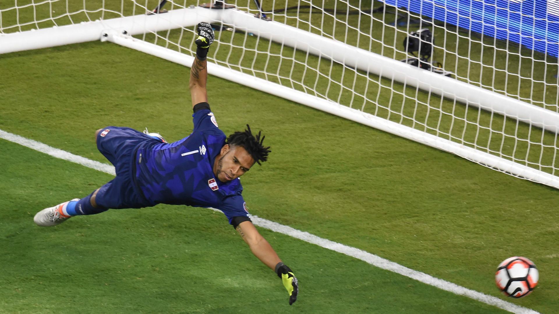 Pedro Gallese Peru Copa America