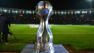 Copa Argentina trophy 1122016
