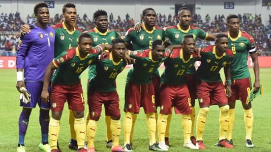 アフリカ王者カメルーンのW杯予...