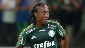 Arouca Palmeiras Capivariano 28022015