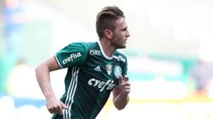 Fabiano Palmeiras Chapecoense Brasileirão 27112016