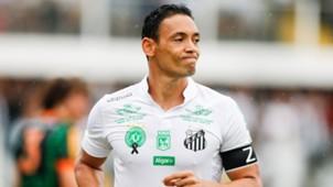 Ricardo Oliveira Homenagens Chape Santos América-MG Brasileirão 11122016