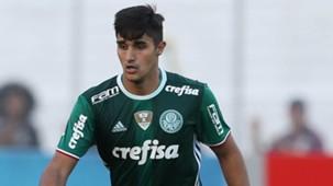Thiago Martins Ponte Preta Palmeiras Brasileirão 21052016