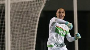 Fernando Prass Palmeiras Rio Claro Paulista 03312016