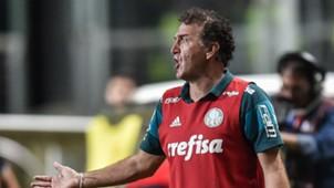 Cuca Atlético-MG Palmeiras Brasileirão 17112016