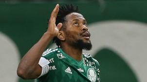 Zé Roberto Palmeiras 12092015