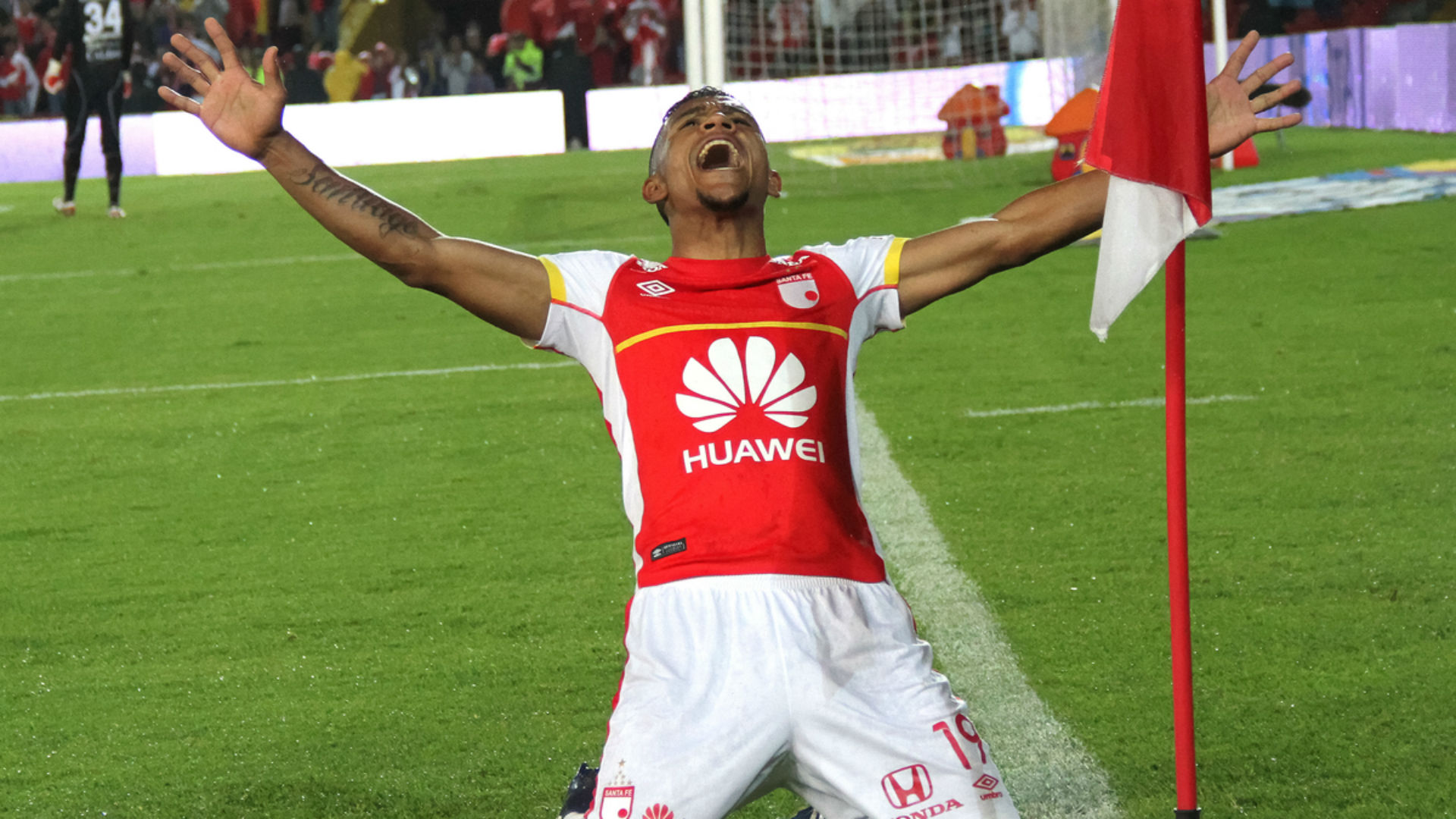 Wilson Morelo gol - Santa Fe