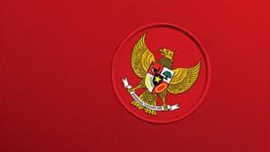 Jersey tim nasional Indonesia di AFF 2014