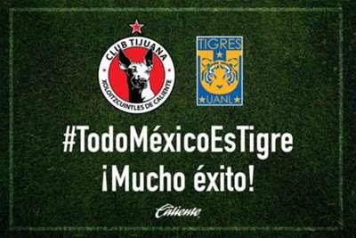 Apoyo Tigres Libertadores