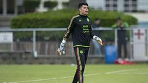 Jesse González, México, Tri, Selección Mexicana