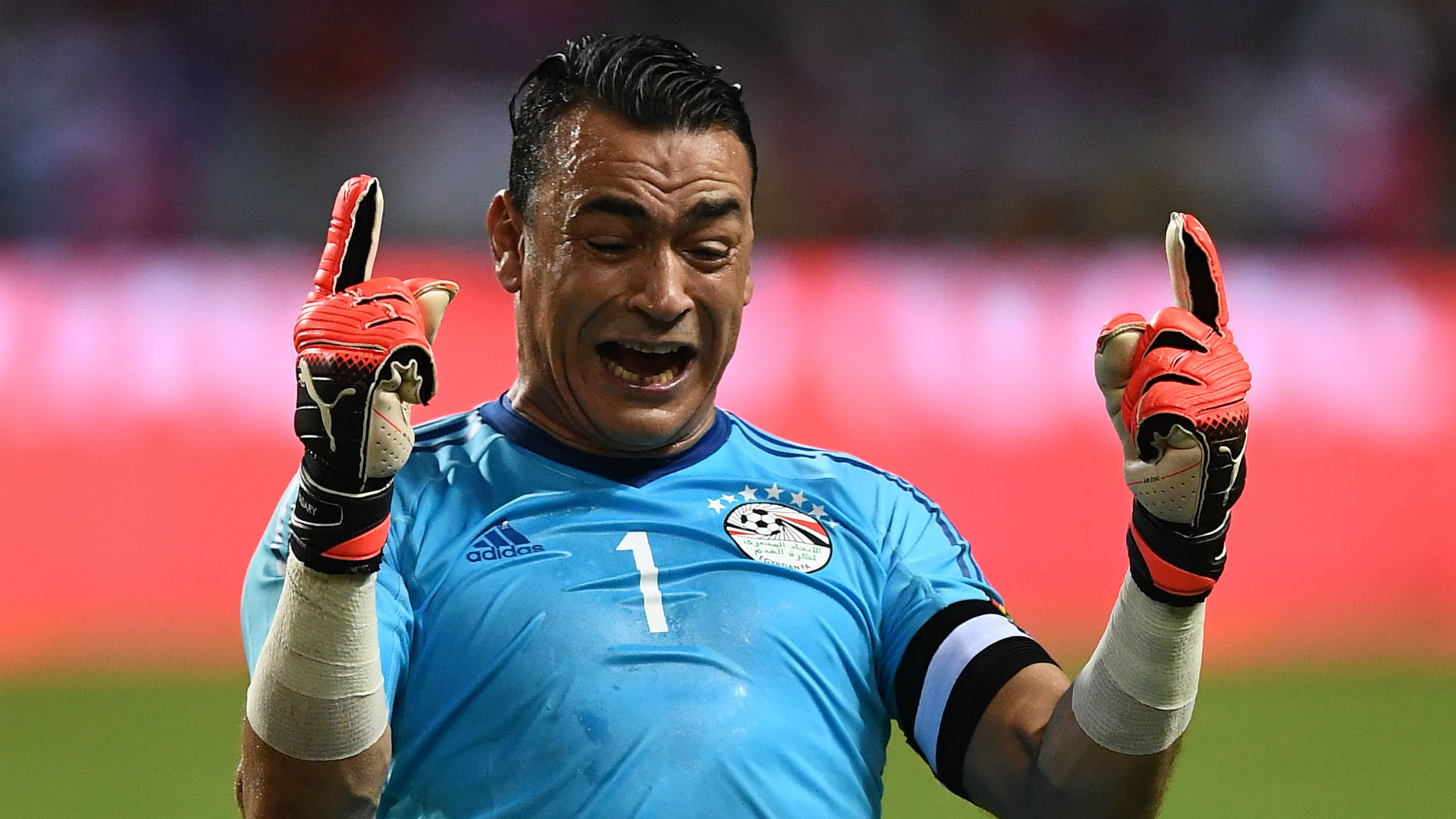 World Cup's oldest player El-Hadary retires from Egypt duty
