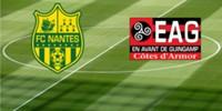Nantes v Guingamp(2017)