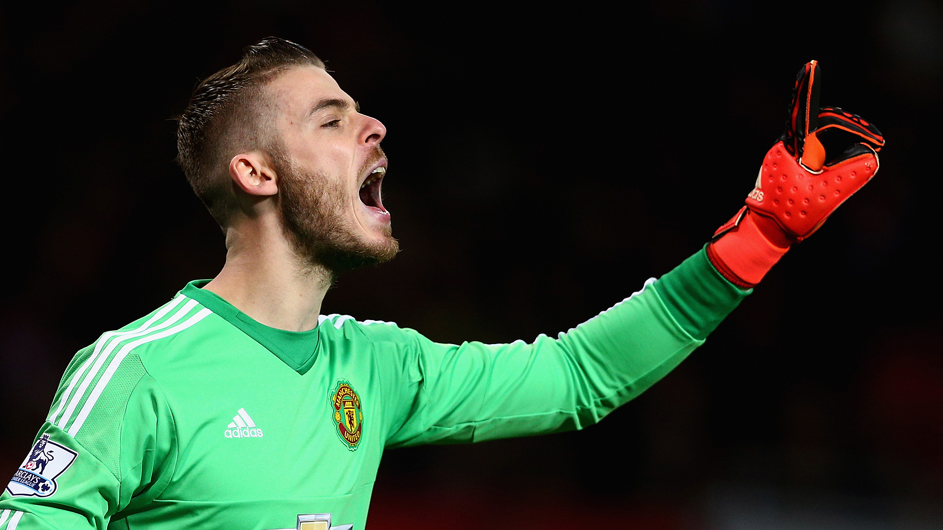 David De Gea Manchester United Premier League 12052015