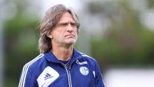Norbert Elgert Schalke 04 14062014