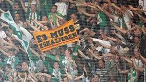 Rapid Wien Fans 04022011