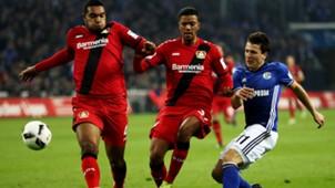 Schalke 04 Bayer Leverkusen 12112016