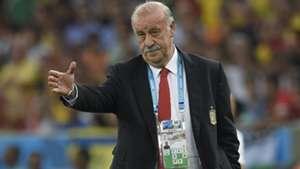 Vicente del Bosque Spain Chile WC 2014