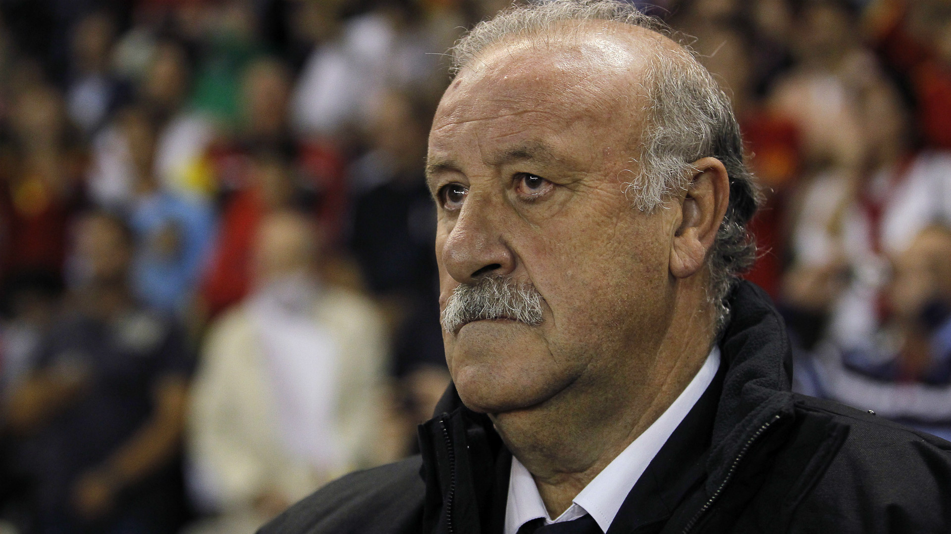 Vicente del Bosque Spain Georgia WC Qualifier