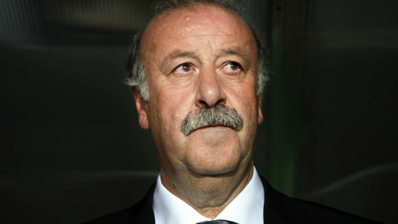 Vicente del Bosque Spain Bosnia 2008 WC Qualifier