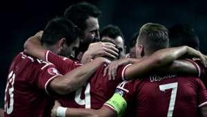 Hungary celebrating Euro 2016