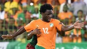 Wilfried Bony, Ivory Coast
