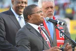 Fikile Mbalula, Chan, January 2014