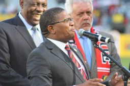 Fikile Mbalula, Chan, January 2014